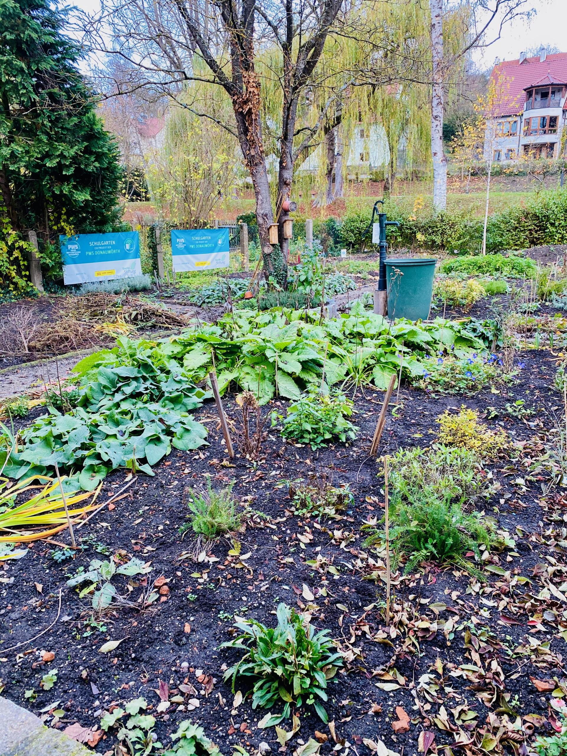 Der Schulgarten vor der Umgestaltung.